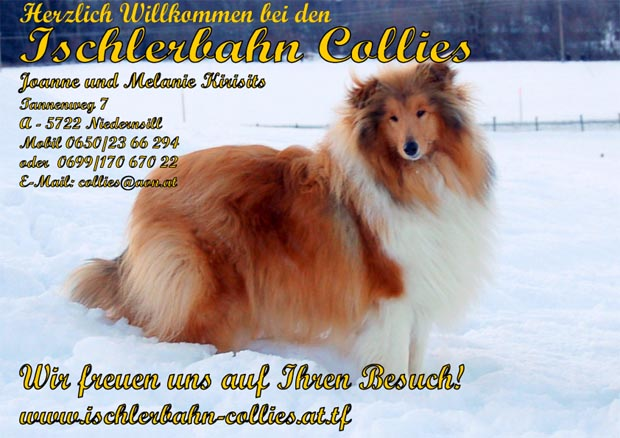 Ischlerbahn Collies